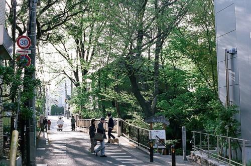 Tempat Istirahat di Tokyo: bukit Todoroki