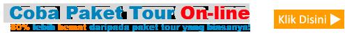 paket tour online