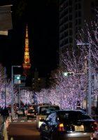 Tempat Wisata di Tokyo Roppongi