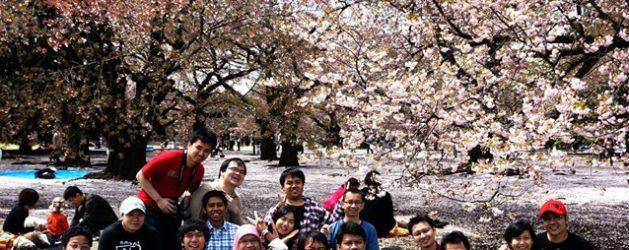 testimoni tour guide online info jepang tour guide murah ke jepang