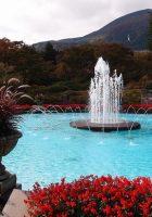 Tempat Wisata di Hakone Taman Gora