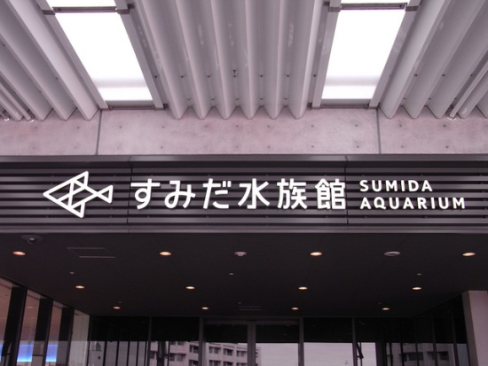 Akuarium Sumida