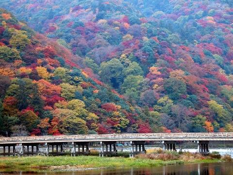 Pemandangan momiji di Kyoto: Arashiyama