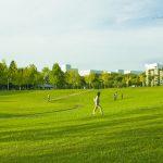 Area lapangan terbuka di Bampaku Kinen Koen