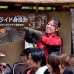 Atraksi burung di Zoorasia Yokohama