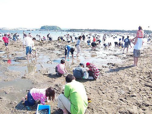 Bermain di pantai terbuka Yokahama Hakeijima Sea Paradise
