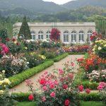 Bunga-bunga di Taman Kawazu Bagatelle