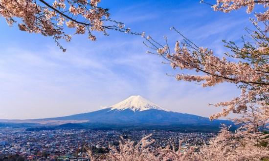Bunga sakura dan Gunung Fuji dari Pagoda Chureito