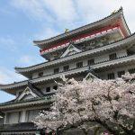 Bunga sakura di Kastil Atami