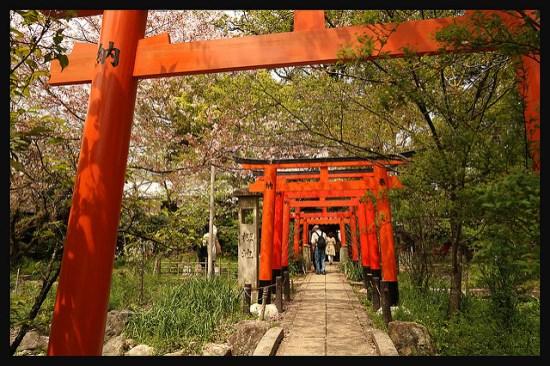 Deretan Torii di Kuil Hirano Kyoto