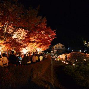 Festival Momiji Kawaguchiko