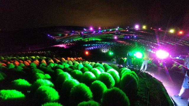 Foto suasana Cochia Lightup Festival