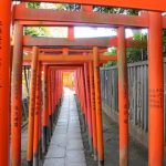 Gerbang Torri warna merah di Kuil Nezu Tokyo