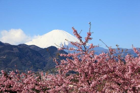 Gunung Fuji dari Matsuda