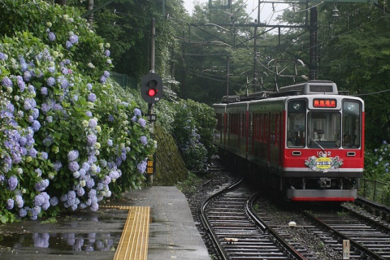 Hakone Tozan Train atau kereta gunung Hakone