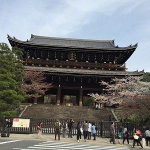Hanami sakura di Chionin Temple