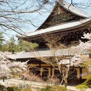 Hanami sakura di Nanzenji Temple