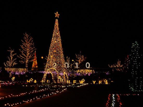 Iluminasi Natal di Taman Ashikaga Tochigi