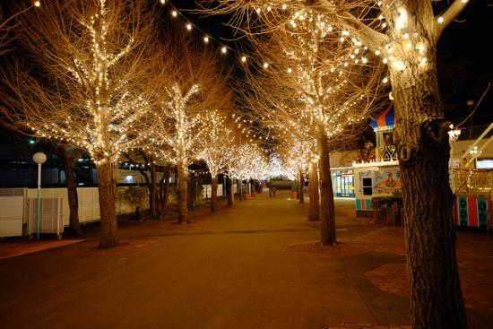 Iluminasi di Taman Bermain Toshimaen