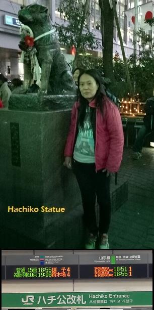 Itinerary Tokyo Osaka Shirakawago ke Hachiko di Shibuya