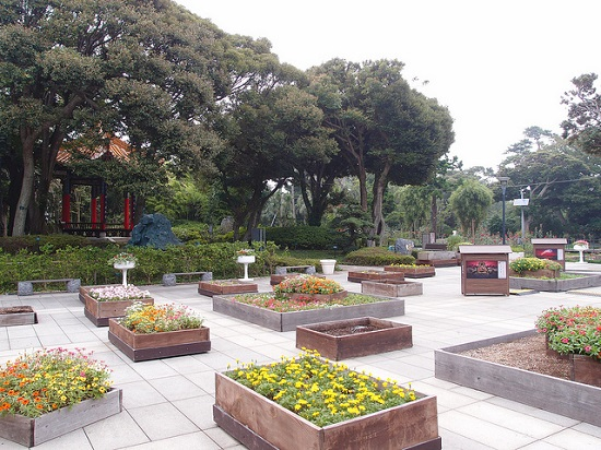 Jalan-jalan ke Taman Samuel Cocking di Enoshima