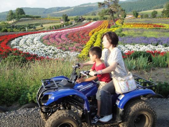 Kebun bunga Biei di Hokkaido
