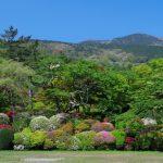 Keindahan Taman Horaien di musim panas