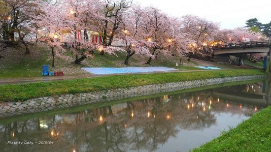 Keindahan bunga sakura di Kastil Okazaki