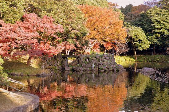 Koishikawa Korakuen at fall
