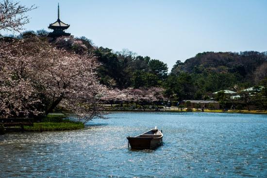 Kolam di tengah Taman Sankeien