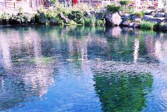 Kolam jernih di Oshino Hakkai