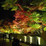Kuil Eikando di Kyoto