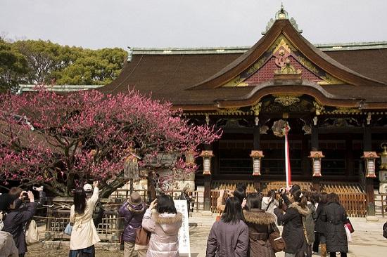 Kuil Kitano Tenmangu di musim semi