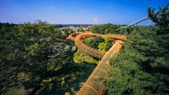 Labirin raksasa di Hitachi Seaside Park