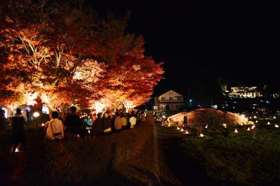 Light up momiji di Danau Kawaguchiko