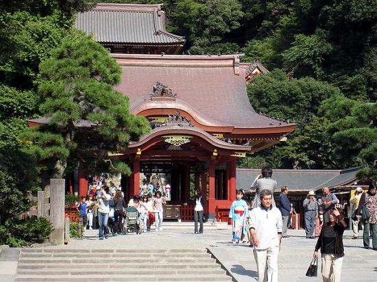 Mengunjungi Kuil Tsurugaoka Hachimangu di Kamakura
