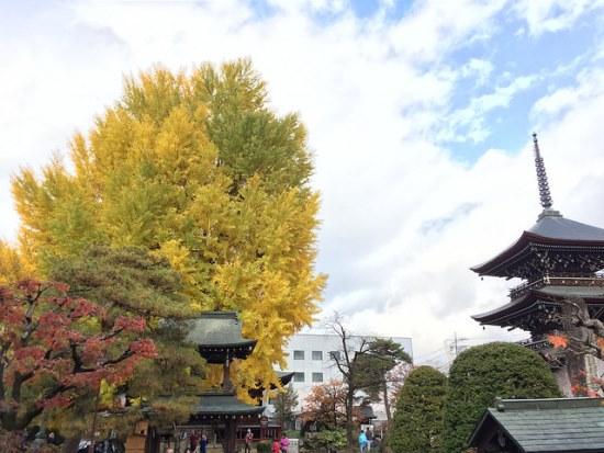 Musim gugur di Kuil Hida Kokubunji