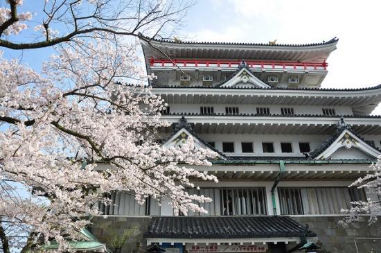 Musim semi di Kastil Atami Shizuoka