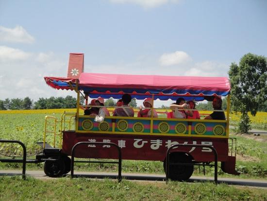 Naik gerobak mesin di Himawari no Sato