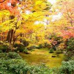 Panorama musim gugur di Okochi Sanso Arashiyama