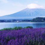 Pemandangan Gunung Fuji dari Oshino Hakkai