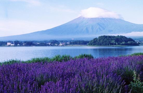 Tempat Wisata di Fuji-Kawaguchiko Oshino Hakkai