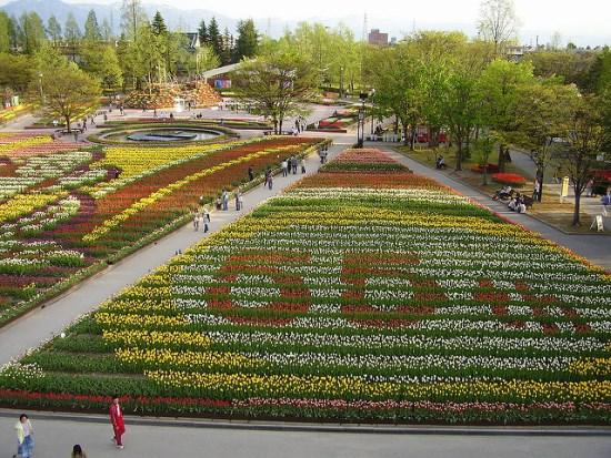 Pemandangan Kebun Tulip Tonami