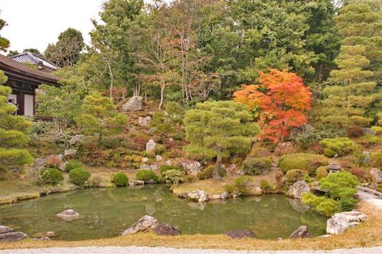 Pemandangan Kuil Ninnaji Kyoto saat musim gugur