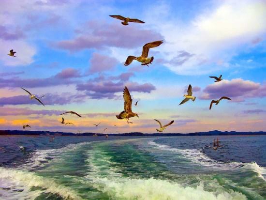 Pemandangan Terindah di Jepang Matsushima di Miyagi