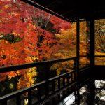 Pemandangan momiji dari Kuil Rurikoin Kyoto