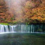 Pemandangan musim gugur di Air Terjun Shiraito
