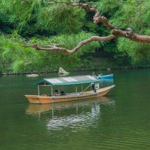 Pengalaman menyusuri sungai Hozugawa Sakura