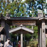 Pintu masuk Nikko Edomura Edo Wonderland