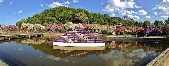 Piramid bunga di Taman Ashikaga